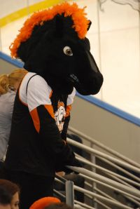 The Mustangs' mascot: real horse or not?